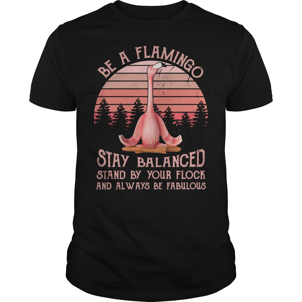 Be a Flamingo stay balanced stand by your flock and always retro Guys shirt