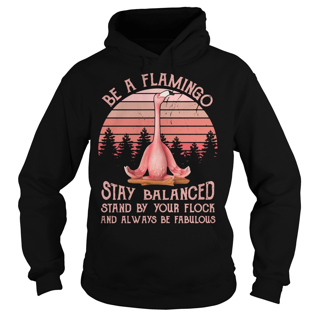 Be a Flamingo stay balanced stand by your flock and always retro Hoodie
