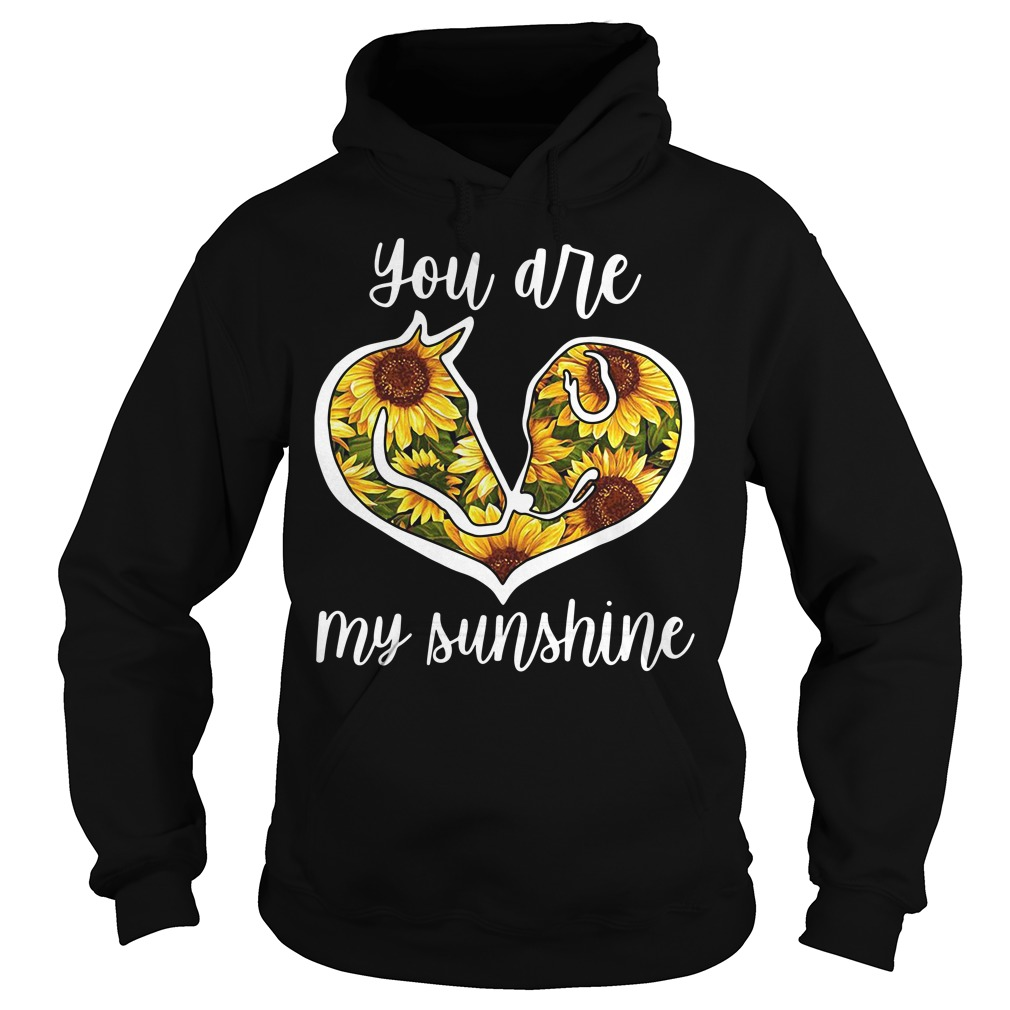 Horse and Dog sunflower you are my sunshine Hoodie