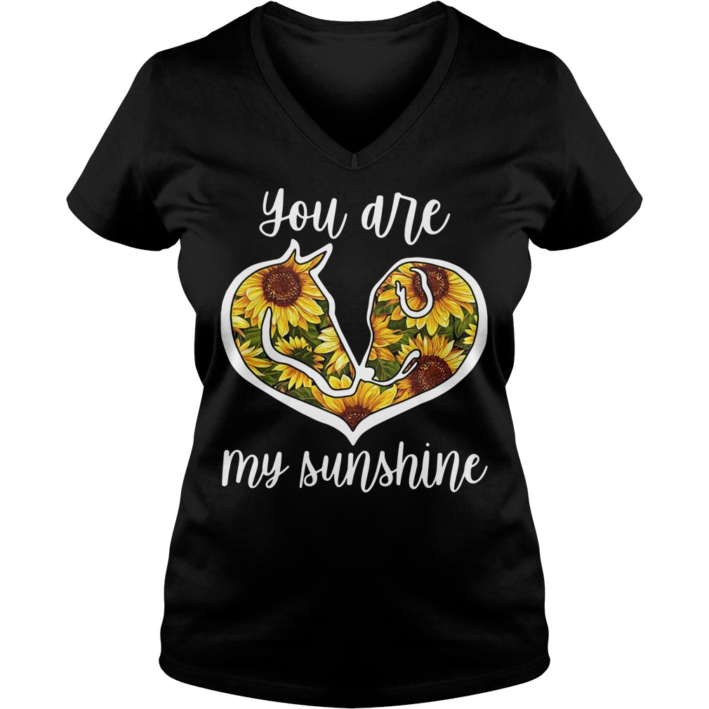 Horse and Dog sunflower you are my sunshine V-neck T-shirt
