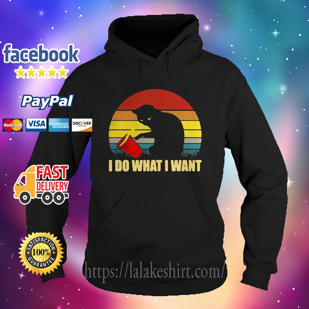 I do what I want cat Vintage Hoodie