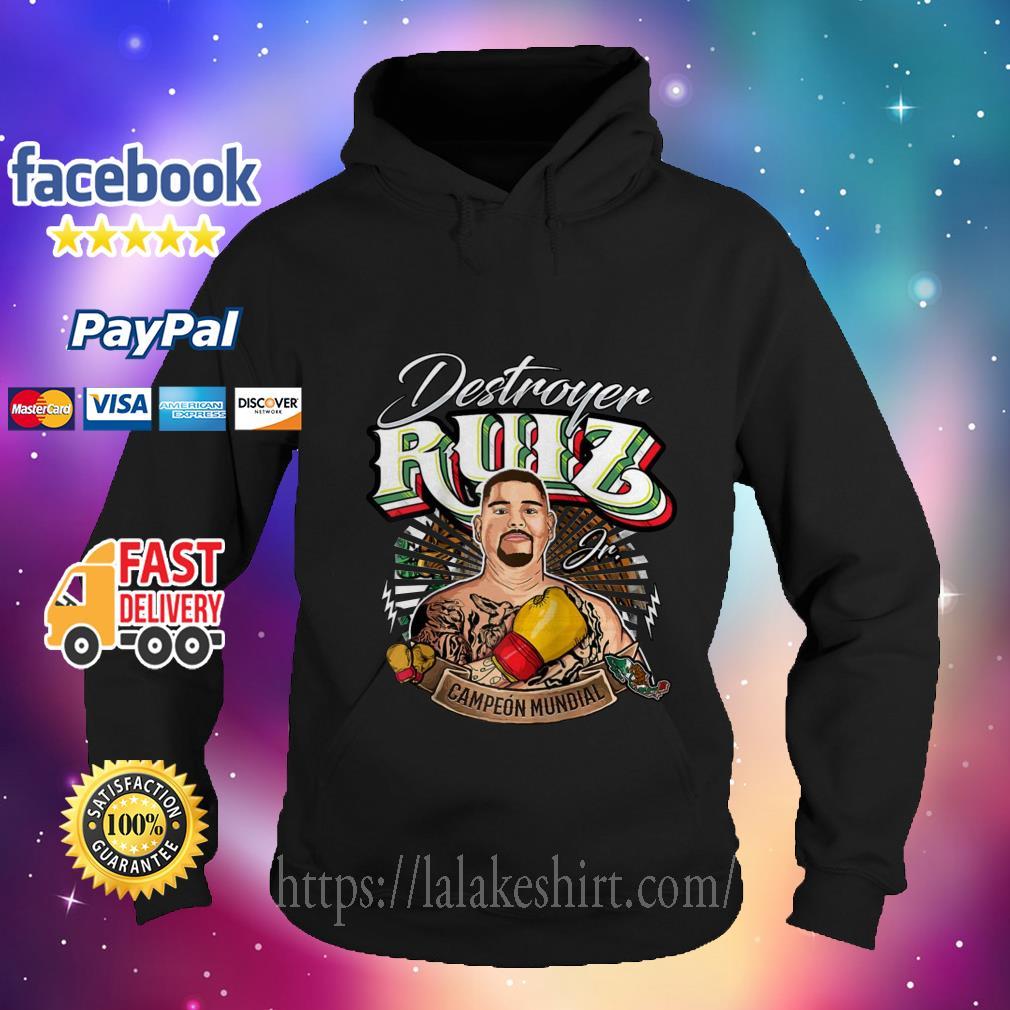 Destroyer Ruiz Jr world champion hoodie