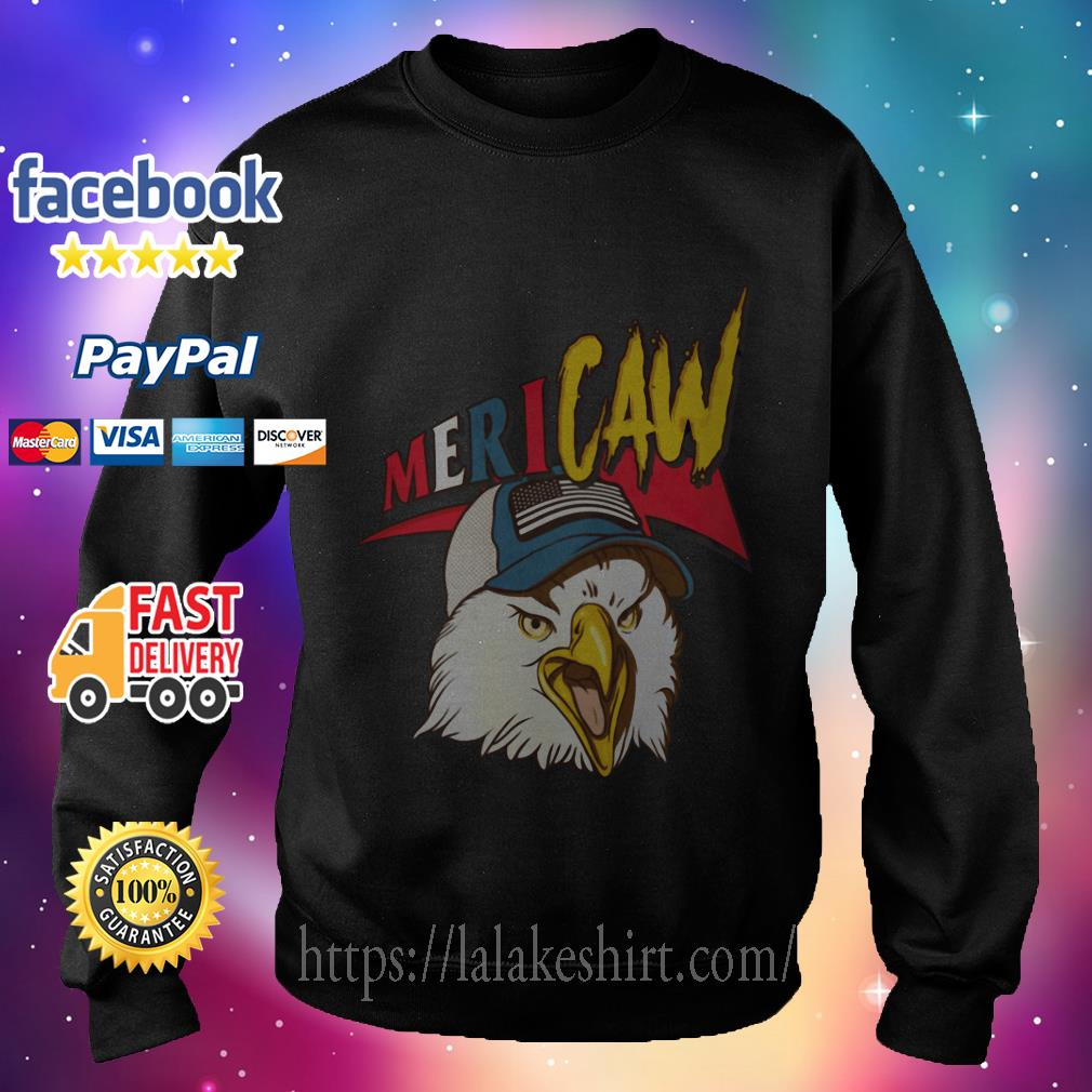 Independence Day Mericaw eagle sweater
