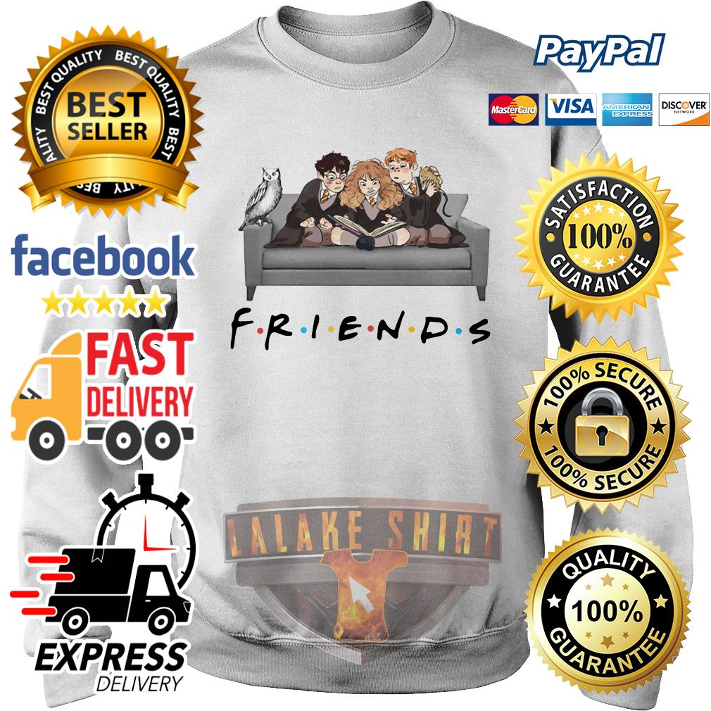 Harry Potter Friends Tv show sweater