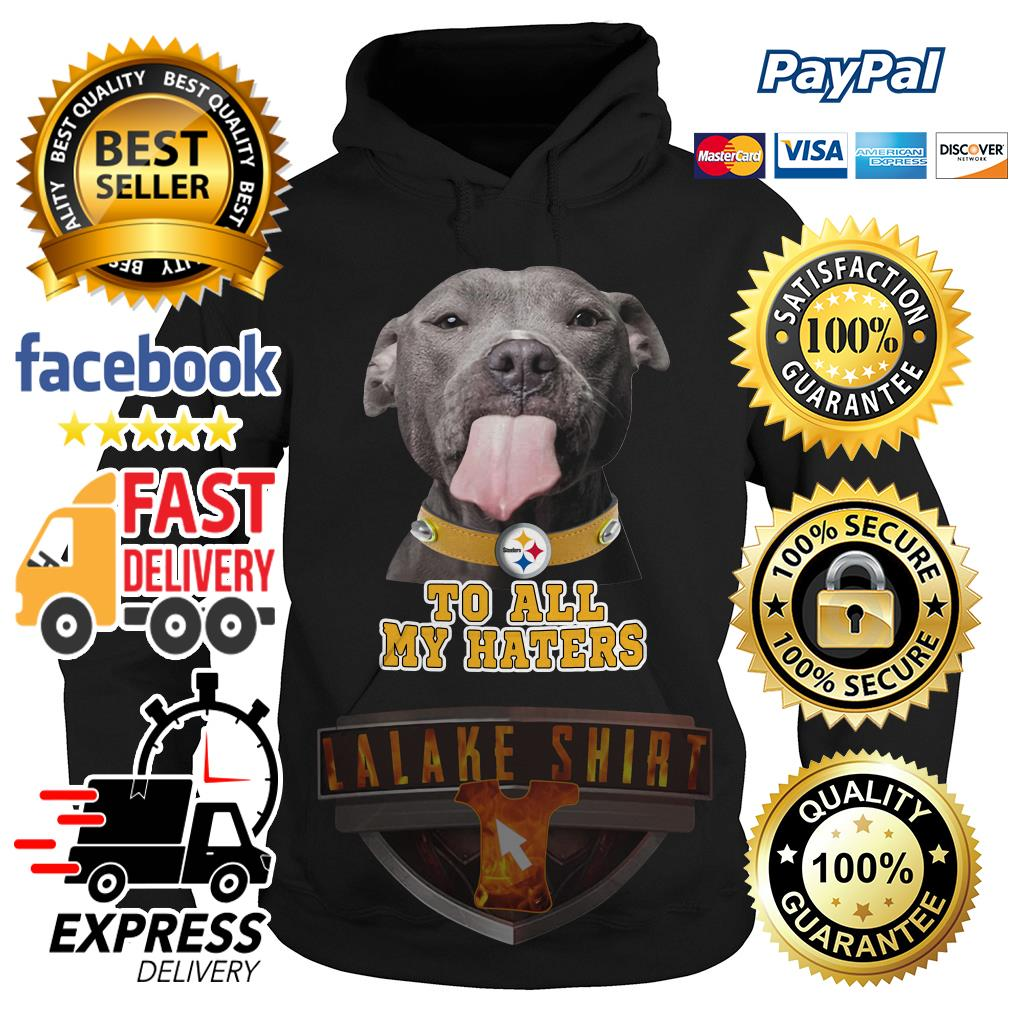 Pitbull to all my haters Pittsburgh Steelers hoodie
